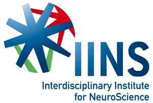 IINS logo